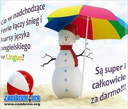 społeczeństwo, Darmowe zajęcia językowe Linguo! - zdjęcie, fotografia