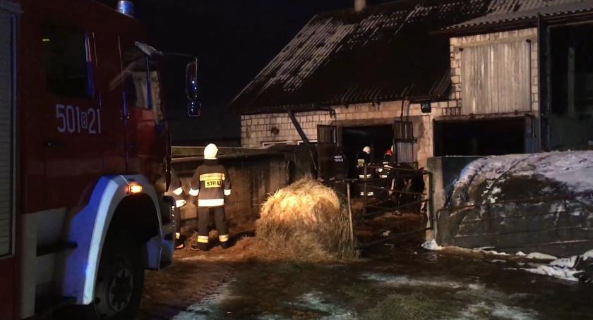 pożary i straż, Pożar budynku gospodarczego Cieciorkach - zdjęcie, fotografia