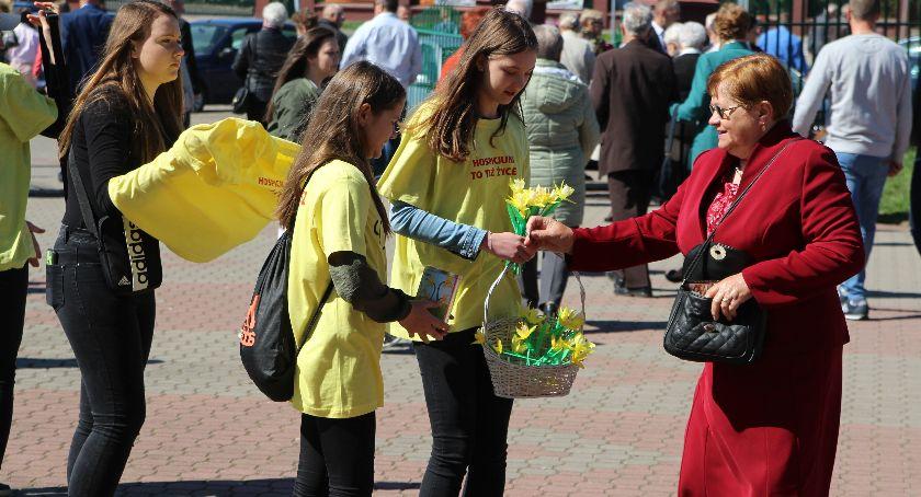"""charytatywne wolontariat, """"Pola Nadziei"""" zakwitną najbliższą niedzielę - zdjęcie, fotografia"""