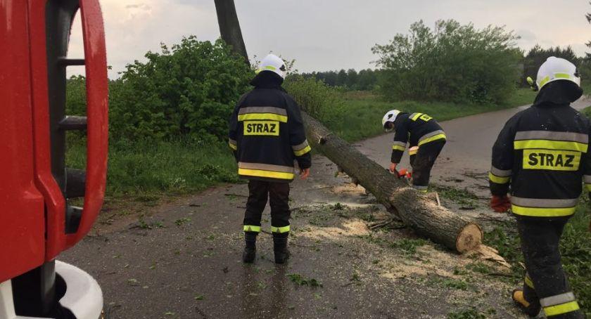 pożary i straż, Skutki wichury powiecie zambrowskim - zdjęcie, fotografia