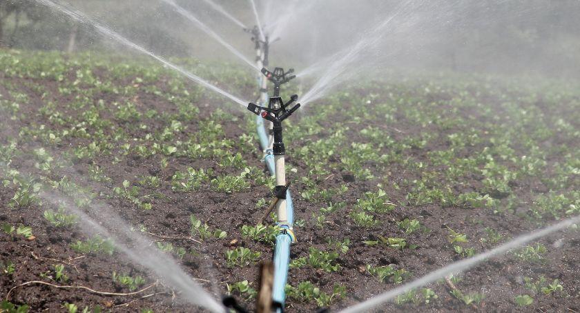 rolnictwo, Ruszają dotacje inwestycje nawadnianie gospodarstw rolnych - zdjęcie, fotografia