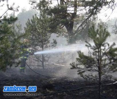 straż, pożarów ciągu ostatniego weekendu - zdjęcie, fotografia