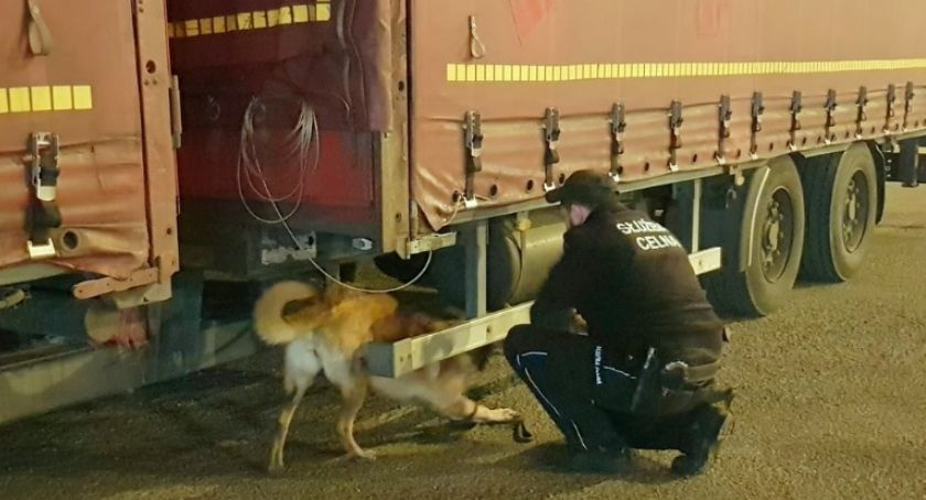 sprawy kryminalne, ciężarówki przemyty - zdjęcie, fotografia