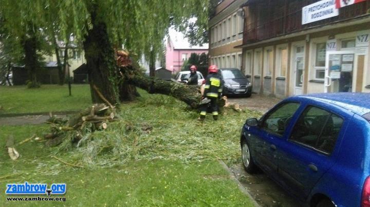 straż, wyrządziło wiele szkód powiecie zambrowskim - zdjęcie, fotografia