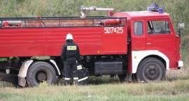 Strażacy uratowali przed pożarem kompleks leśny w Czerwonym Borze