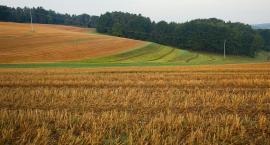 Rolnicy składają wnioski o dopłaty bezpośrednie za 2018 rok