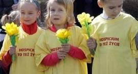 """""""Pola Nadziei"""" zakwitną w najbliższą niedzielę"""