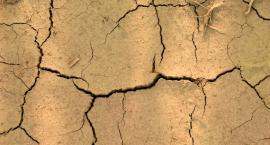 Bez oszacowania strat po suszy rolnicy nie dostaną pomocy