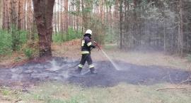 4 pożary w ciągu jednego popołudnia. Prawdopodobnie doszło do podpaleń [foto]