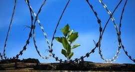 Osadzeni w więzieniach pójdą do pracy. W planach - utworzenie hali produkcyjnej w Czerwonym Borze