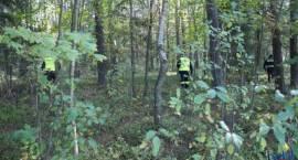 Grzybiarz zgubił się w lesie. Szukali go policjanci