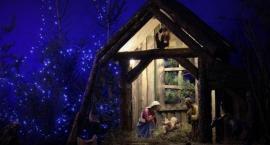 Życzymy wesołych Świąt Bożego Narodzenia!
