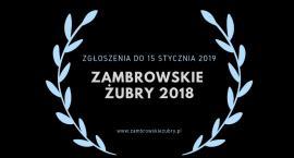Można już zgłaszać nominacje do Zambrowskich Żubrów 2018