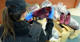 Celnicy przechwycili blisko 100 par podrobionego obuwia