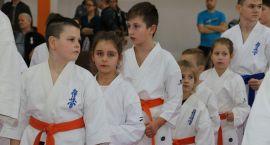Ogólnopolski Turniej Rodzinny Karate Kyokushin rozstrzygnięty [foto]