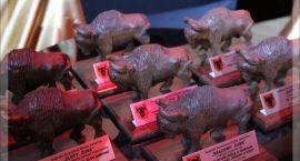 Znamy nominowanych do Zambrowskich Żubrów. Rozpoczyna się głosowanie