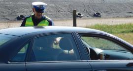 """3 kolizje i 2 nietrzeźwych kierowców - zambrowska """"drogówka"""" podsumowała długi weekend"""