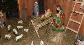Szopki bożonarodzeniowe w zambrowskich parafiach [foto+video]