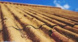 Pozbądź się azbestu z dachu! Możesz dostać dofinansowanie