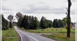 Przetarg na przebudowę drogi Grochy-Pogorzele – Przeździecko-Mroczki unieważniony
