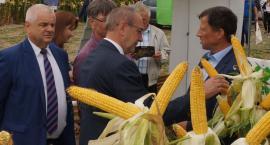 Podlaski Dzień Kukurydzy w Szepietowie [foto]