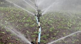 Ruszają dotacje na inwestycje w nawadnianie gospodarstw rolnych