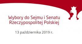 Wybory parlamentarne 2019: na kogo i jak głosować?
