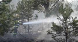 5 pożarów w ciągu ostatniego weekendu