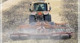 Duże straty w rolnictwie spowodowane przymrozkami, ale nie w powiecie zambrowskim