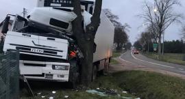 Ciężarówka wjechała w przydrożne drzewo i ogrodzenie posesji [foto]