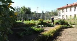 Leczenie ogrodem w Zakładzie Karnym w Czerwonym Borze