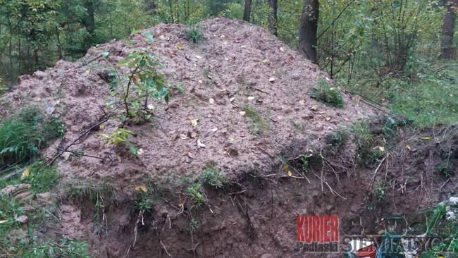 Śmieci z cmentarza - do lasu