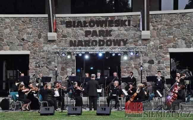 Muzyka - Koncerty, Muzyka klasyczna Białowieży - zdjęcie, fotografia