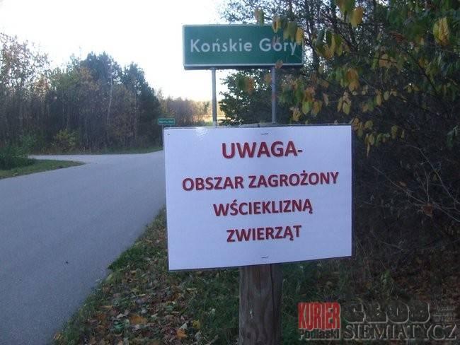 Nurzec Stacja - Wścieklizna