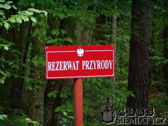 """Wywiady - reportaże , Rezerwat """"Witanowszczyzna"""" - zdjęcie, fotografia"""