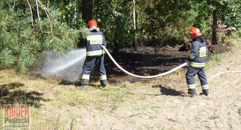 Pożary - straż, Pożar Romanówce - zdjęcie, fotografia