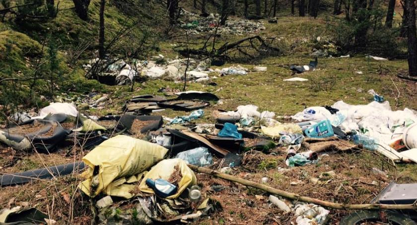 Interwencje, Śmiecie lasach Operacja Czysta Rzeka - zdjęcie, fotografia