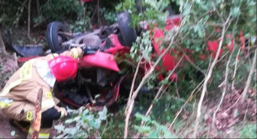 Wypadki drogowe, Sarna przyczyną wypadku - zdjęcie, fotografia
