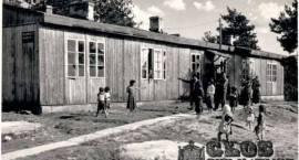 1964. Romowie 45 lat temu