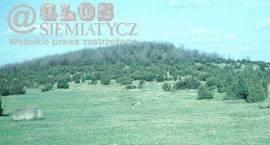 1964. Wilcza Góra w Siemiatyczach, tajemnicze miejsce dawnych kultów