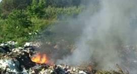 Palą się śmieci - Kułygi, Rogawka