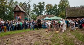 Jesien w polu i w zagrodzie  - Muzem Rolnictwa w Ciechanowcu