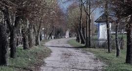 Będzie oficjalne powitanie wiosny na Mazowszu.