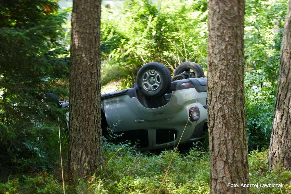 Wypadki drogowe, Dachowanie lesie - zdjęcie, fotografia
