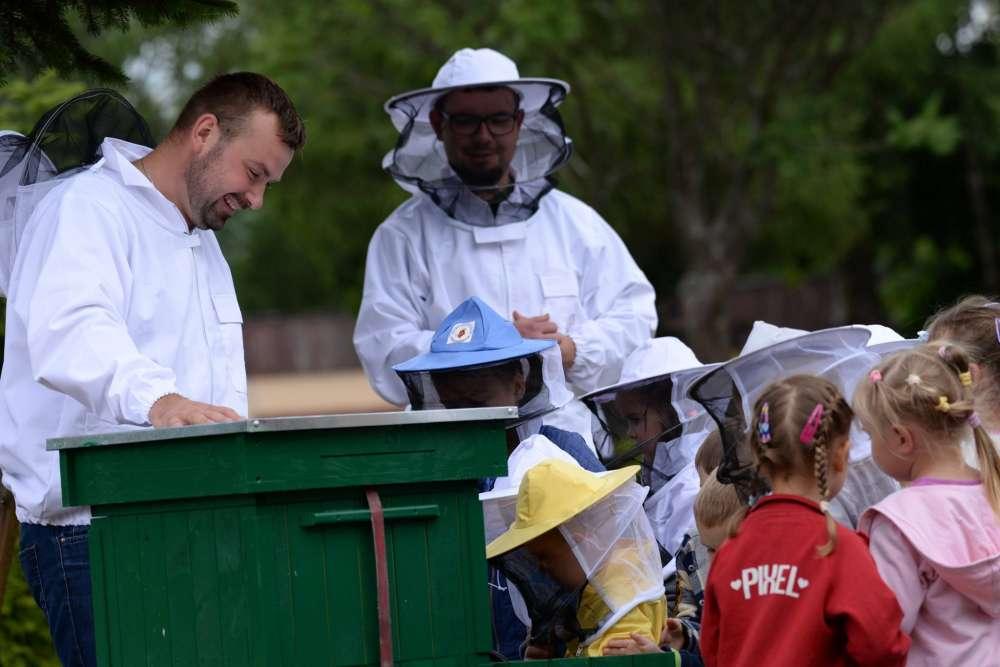 Edukacja, Wizyta pszczelarza Publicznym Przedszkolu Krajence [WIDEO] - zdjęcie, fotografia