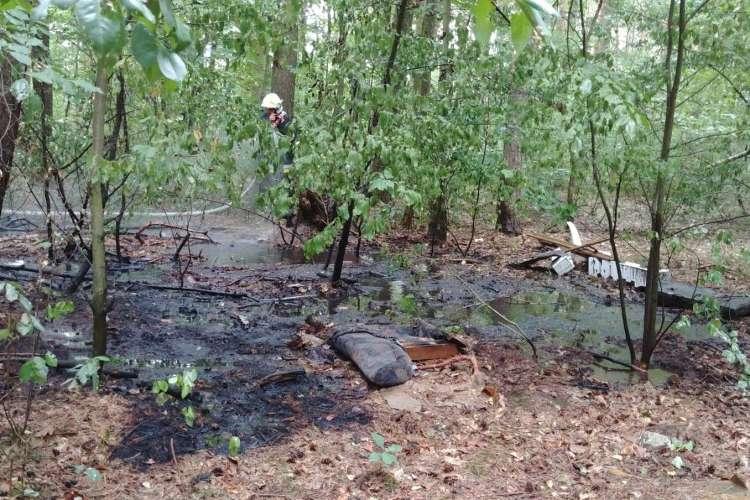 Straż pożarna, Pożar śmieci lesie - zdjęcie, fotografia
