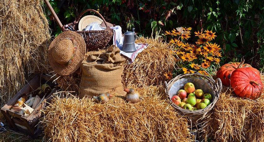 Spotkania i festyny, Sypniewo zaprasza dożynki - zdjęcie, fotografia