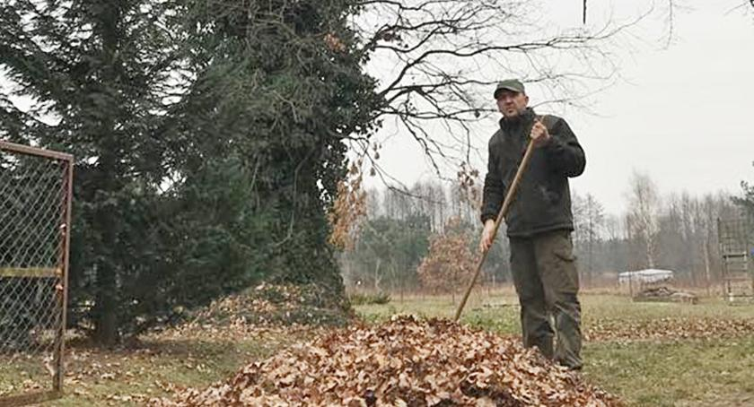 Interwencje czytelników, Drzewo bezwzględnie zachować - zdjęcie, fotografia