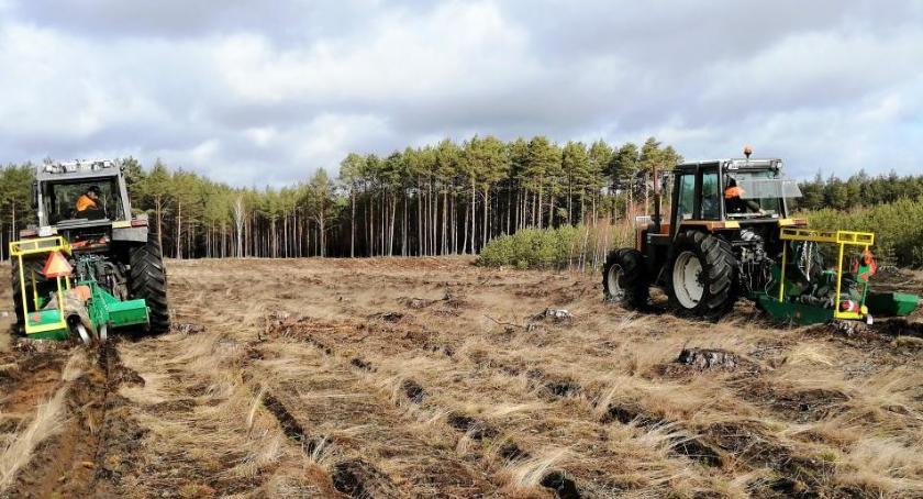 Rolnictwo, będzie - zdjęcie, fotografia
