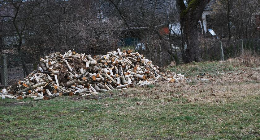 Interwencje czytelników, Interwencja sprawie drewna - zdjęcie, fotografia